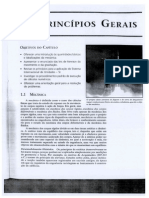 Cap. 1 - Principios Gerais