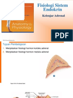 K18 - Fisiologi Adrenal