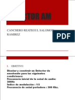 Detector Am