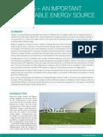 Factsheet_Biogas_6.pdf