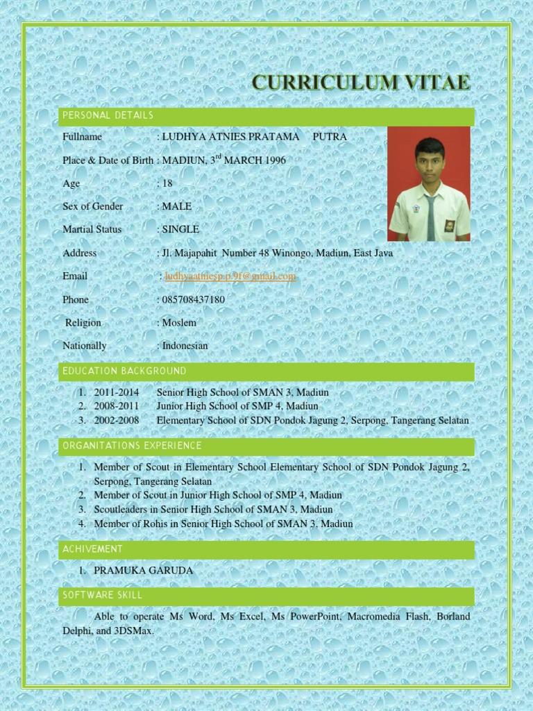 Contoh Curriculum Vitae Untuk Siswa Sma