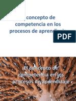 El concepto de competencia .pdf