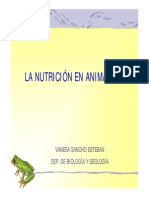 Nutricion Animales 1