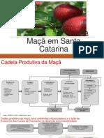 Cadeia Produtiva Da Maçã Em Santa Catarina