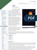 Wikipedia  Vitrification Process