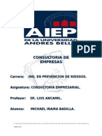ok TRABAJO MICHAEL CONSULTORIA.doc