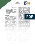 D P2 OGeometricaV2.0