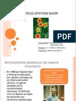 Virus Epstein Barr1