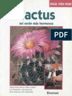Cactus - Asi Seran Mas Hermosos