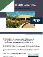 MUSEO DE HISTORIA NATURAL.pptx