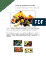 Clasificación de Las Frutas Según Las Regiones