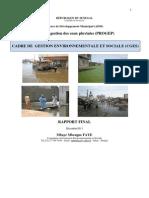 Rapport Final CGES PROGEP Decembre 2011