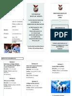 Brochures Diplomado Actualizacion Contable -UMA
