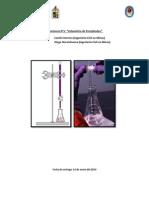 Informe 5 Lab Quimica
