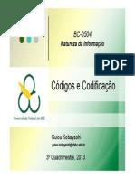 05+Codigos+e+Codificacao+2013-3