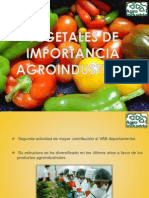 Vegetales de Importancia Agroindustrial
