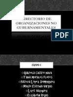 Directorio de organizaciones no gubernamentales-1.pdf