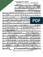 Cali Pachanguero Concert Band 2012 Ok - 002 Flute]