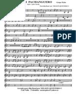 Cali Pachanguero Big Band 2012 Finalizado - 009 Trumpet In