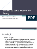 Influxo de Água Modelo de Leung