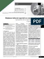 216040126-Regimen-Laboral-2013-2014
