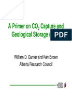 A Primer on CO2 Capture and Geological Storage (CCS)
