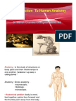 introductiontoanatomy-101020230203-phpapp01.ppt