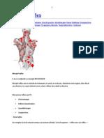 Presopunctura.docx