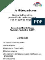 Proyecto Hidrocarburos Bancada Frente Guasu