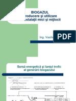 Instalatii biogaz.pdf