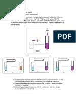 Desarrollo Experimental y Explicacion de Las Reacciones Organicas