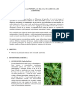 1identificacion de Malezas en Agronomia