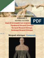Βιολογία Α΄ Λυκείου κεφ09 - Νευρικό Σύστημα