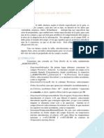 Práctica Base de Datos w2003