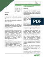 Modelo Instrução de Serviço - Fundações - Escavações