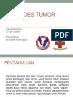 Lapkas Pyllodes Tumor