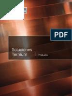 Soluciones Ternium