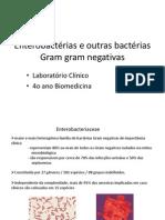 LC BacteriasGramNegativas