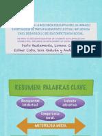 PRESENTACION - PROYECTO DE INVESTIGACIÓN EDUCATIVA.