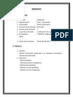 Planificacion Entrevista Mejorada (2)