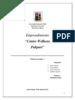 Avance Emprendimiento Paã'Puri Con Resumen Ejecutivo.