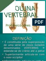 coluna vertebral EXCELENTE.ppt