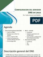 Configuracion Del Servidor DNS en Linux