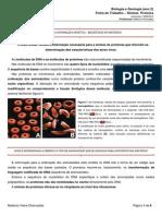 Ficha Informativa Sintese Proteica