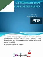 Uji Kualitatif Dan Kuantitatif Asam Amino