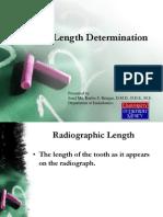 Endodontics Working Length