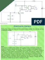 Music Circuits,practical electronic
