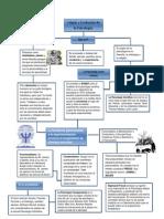 Mapa Conceptual Origen y Evolucion de La Psicologia