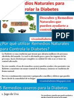 Remedios Naturales Efectivos Para La Diabetes
