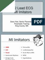 2013 MI Imitators